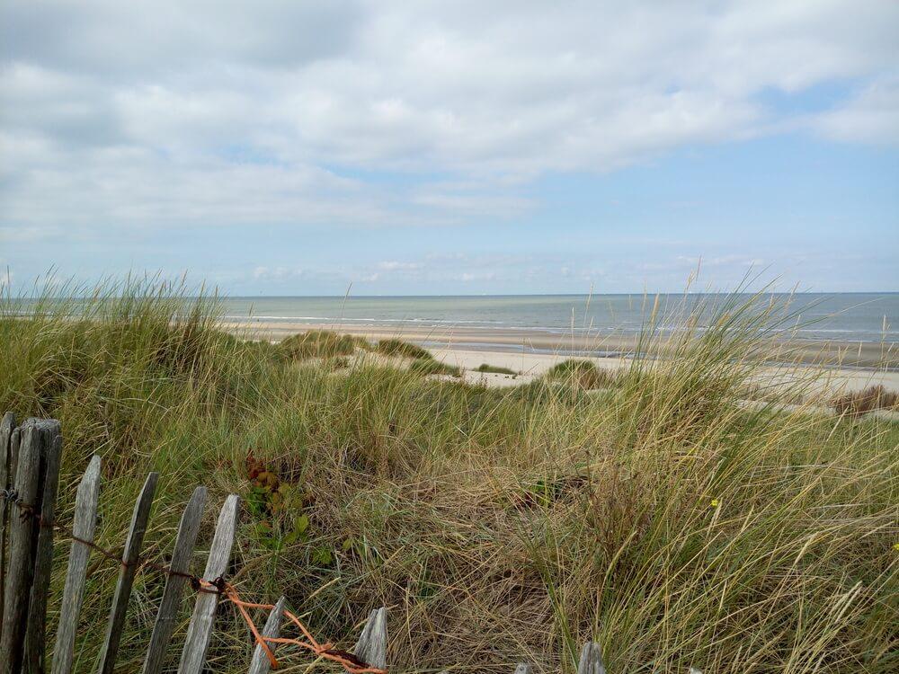 Beach View 8